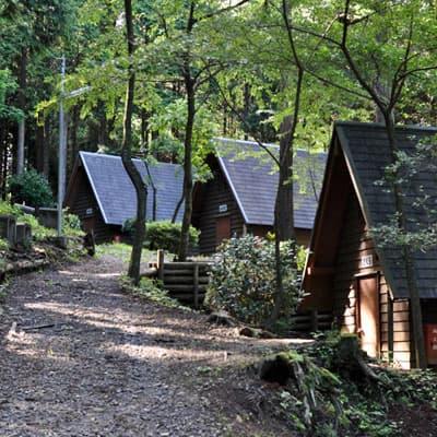 乙女森林公園キャンプ場